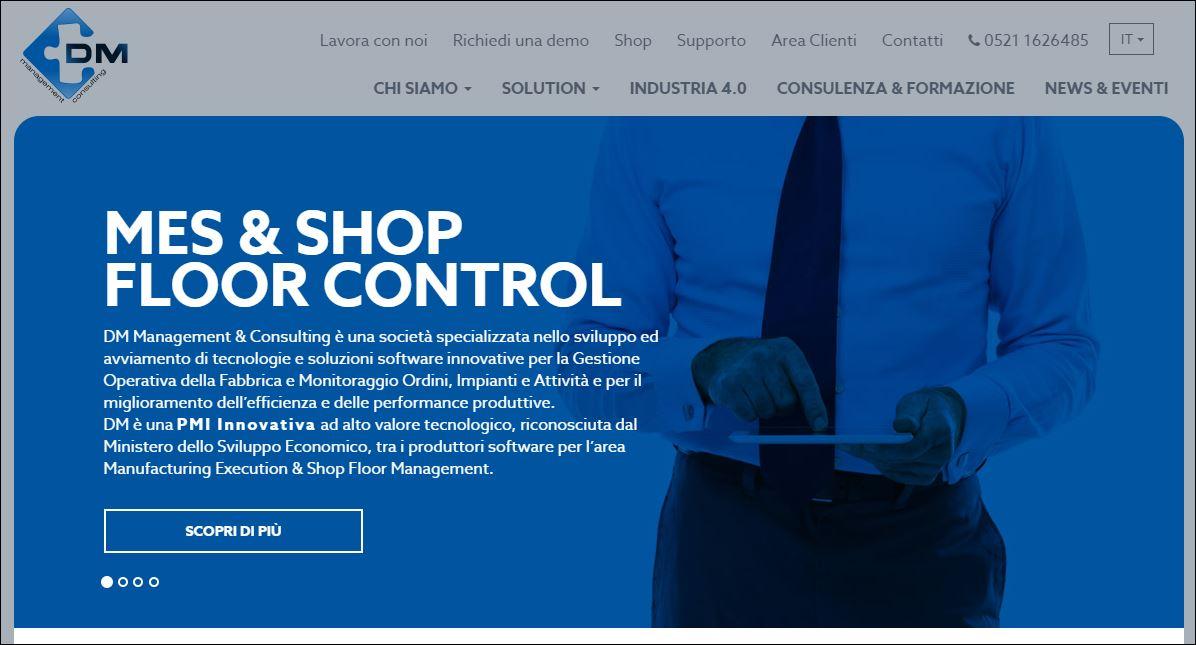DM Managment & Consulting